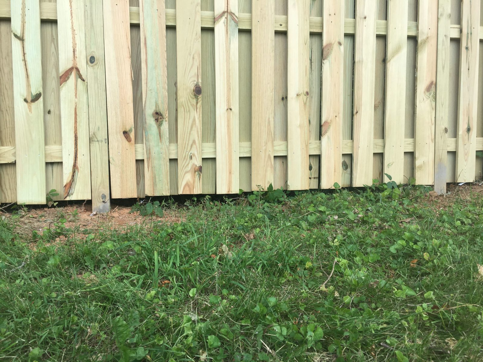 Fence Alignment: Level on the Bottom (Standard)