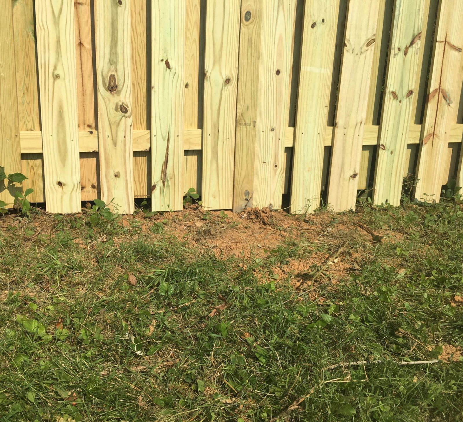 Fence Alignment: Aligned with the Ground (Custom)